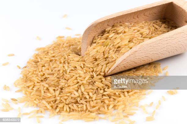 pile of brown rice isolated