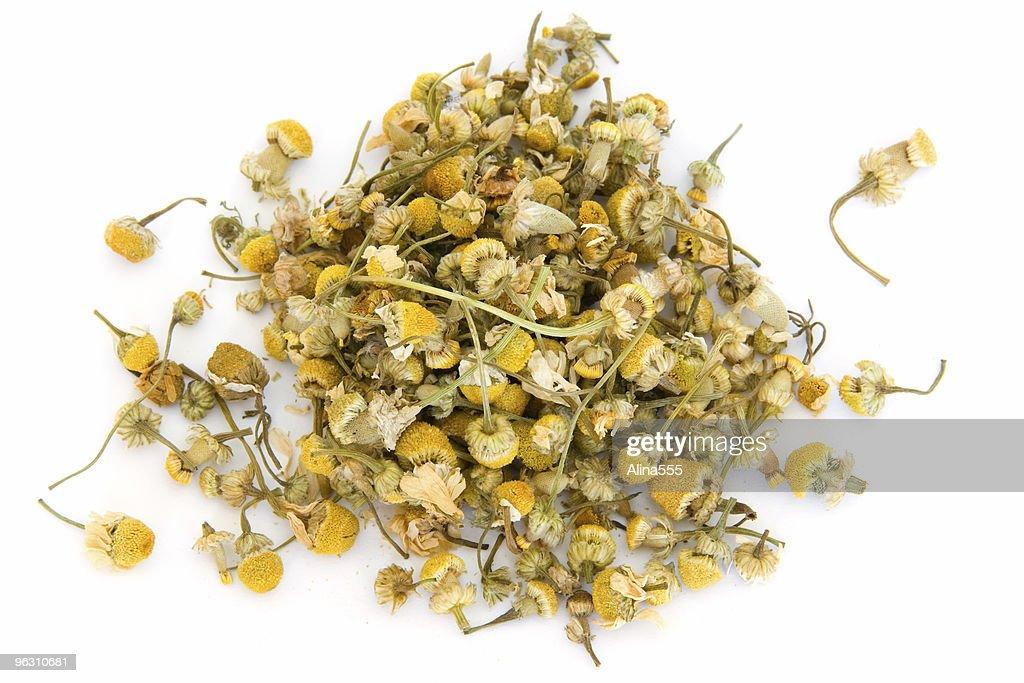 Pile of chamomile on white : Stock Photo