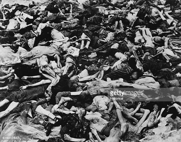 A pile of dead emaciated bodies victims of a Nazi concentration camp The bodies are either naked or partially clothed