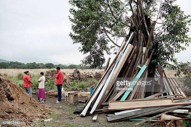 A pile of discarded lumber leans against a tree in the Dilma Rousseff favela of Rio de Janeiro Brazil on Monday July 6 2015 As the fastest inflation...