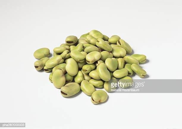 pile of dried broad beans - seco fotografías e imágenes de stock