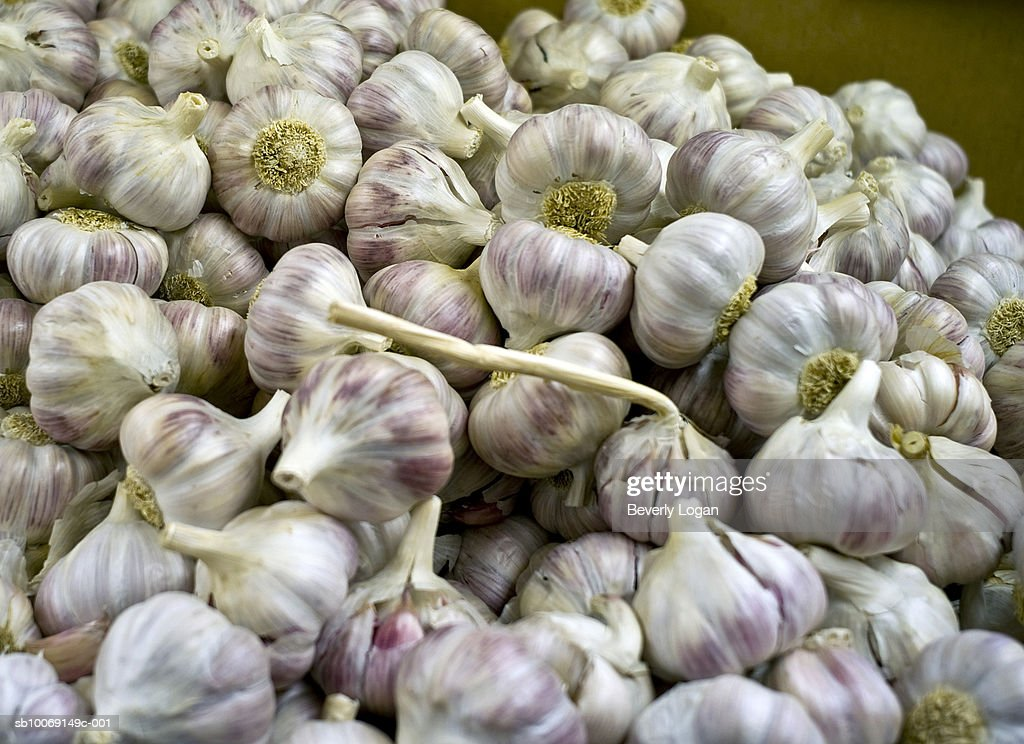 Pile of garlic : Stockfoto