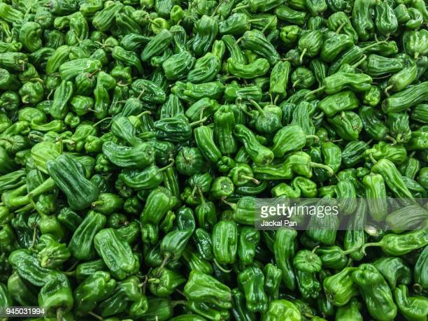 a pile of green peppers - green bell pepper stock pictures, royalty-free photos & images