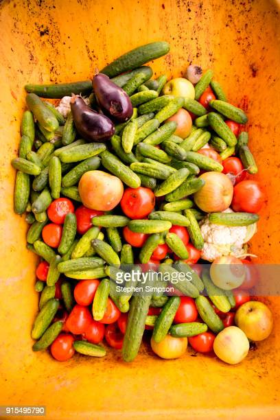 pile of imperfect vegetables in a wheel barrow at a roadside stand - imperfection stock pictures, royalty-free photos & images