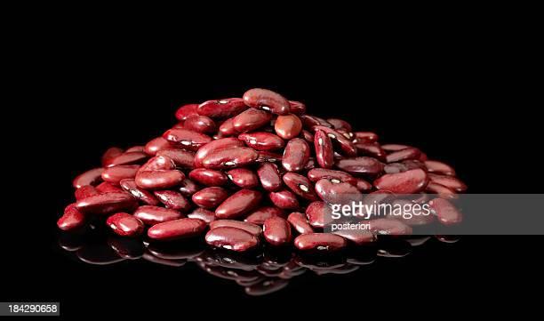 自動インゲン豆