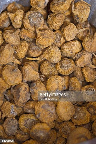 pile of maca - maca plant stock photos and pictures