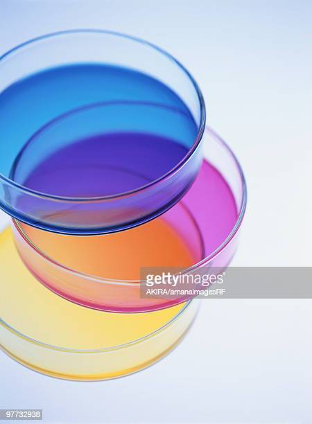 Pile of petri dishes with colorful liquid, blue background