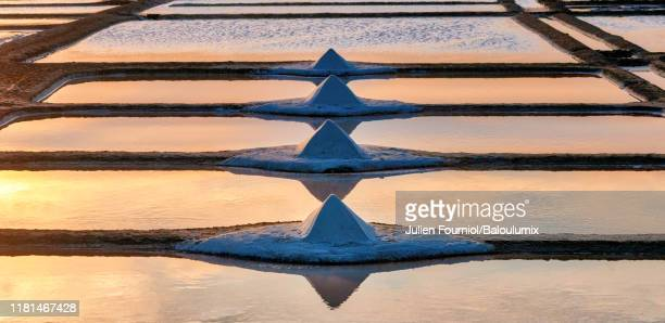 pile of salt in salt marsh, guérande, france - loire atlantique stock pictures, royalty-free photos & images