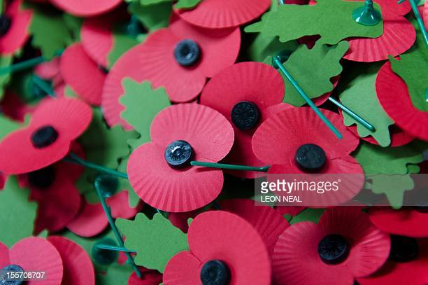 A pile of the iconic red emblem of the British Legion's annual poppy appeal sits on a work bench at the company headquarters in Richmond London on...