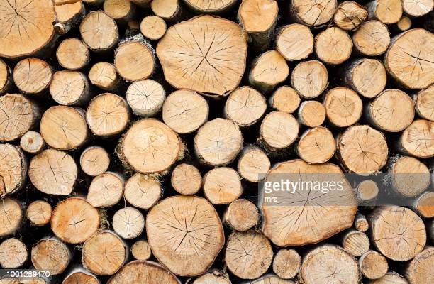 pile of wood - firewood stock pictures, royalty-free photos & images