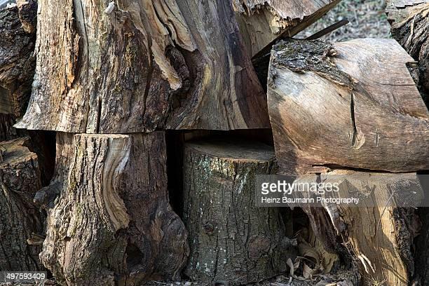 pile of wood, sonvico, ticino, switzerland - heinz baumann photography stock-fotos und bilder