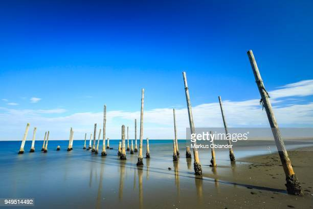 piles of a decayed pier in the water, pelican point, walvis bay, erongo region, namibia - walvis bay stock photos and pictures