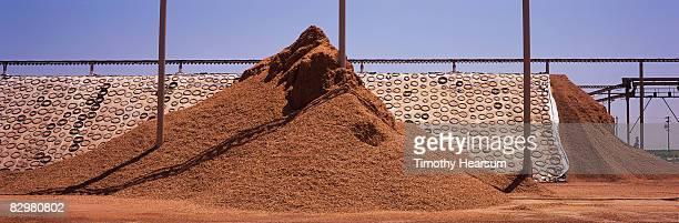 piles of almond shells at hulling facility - timothy hearsum imagens e fotografias de stock