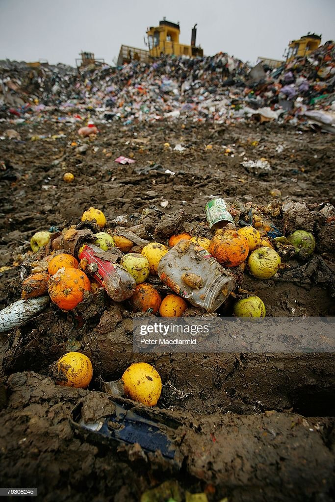 Piles of discarded fruit lie on the ground at the Shelford Landfill, Recycling & Composting Centre on August 23, 2007 near Canterbury, England. The Shelford landfill site, run by Viridor Waste Management receives 200 truck loads of waste weighing 2100 metric tonnes a day.