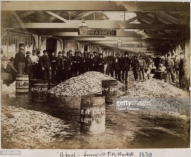 Piles of Fish at English Market