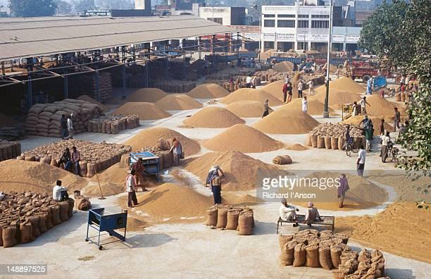 Piles of rice at Karnal wholesale rice market.