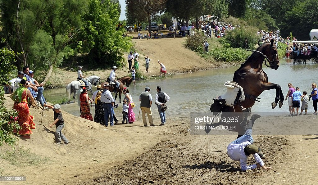 A pilgrim falls off his horse after losing control as pilgrims make their way to the shrine of El Rocio, in the Quema river, during the annual El Rocio pilgrimage, on May 21, 2010 in Villamanrique, near Seville. The pilgrimage to Almonte, which houses the Virgin del Rocio, is the largest in Spain with hundreds of thousands of devotees in traditional outfits converging in a burst of colour as they make their way on horseback and decorated carriages across the Andalusian countryside.