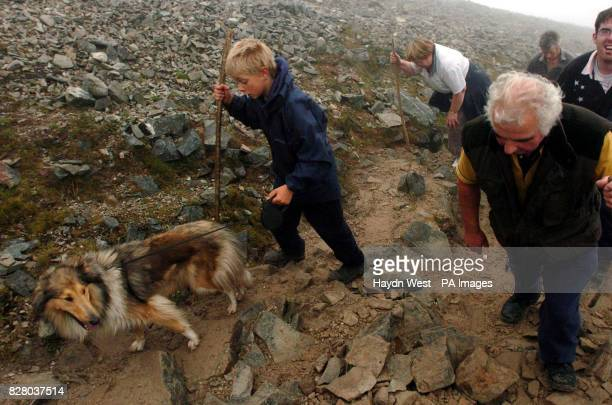 Pilgrim Finton Cooney and dog Saile during the annual climb to the summit of Croagh Patrick in Co Mayo Around 20000 people are expected to complete...
