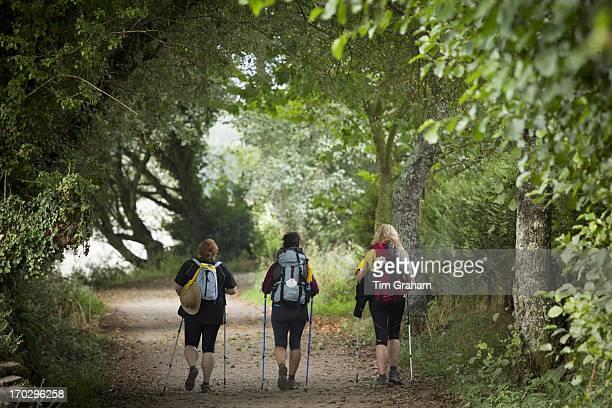 Pilgrim group with shells on rucksacks on the Camino de Santiago Pilgrim's Walk to Santiago de Compostela in Galicia Spain