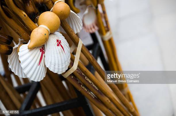 Pilgrimage walking sticks with a scallop shell