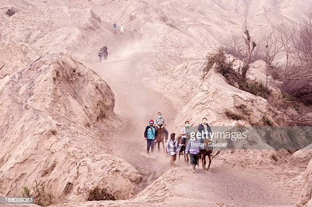 CONTENT] Pilgrims and tourists on the very dusty trail climbing to the crater of the Bromo Volcano Large amount of thin volcanic ash from recent...