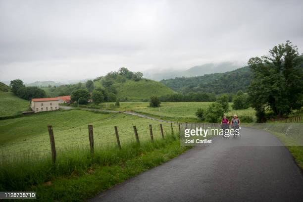 pilgrims hiking the camino de santiago near saint-jean-pied-de-port - pilgrimage stock pictures, royalty-free photos & images