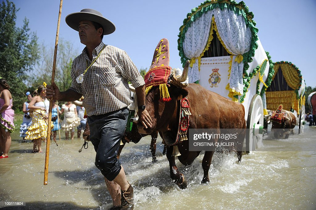 Pilgrims make their way to the shrine of El Rocio crossing the Quema river during the annual El Rocio pilgrimage, on May 21, 2010 in Villamanrique, near to Seville.The pilgrimage to Almonte which houses the Virgin del Rocio is the largest in Spain with hundreds of thousands of devotees in traditional outfits converging in a burst of colour as they make their way on horseback and decorated carriages across the Andalusian countryside.