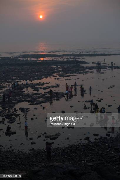 pilgrims mingle at dawn on the banks of haji ali dargah mosque in mumbai, india. - religious event stock pictures, royalty-free photos & images