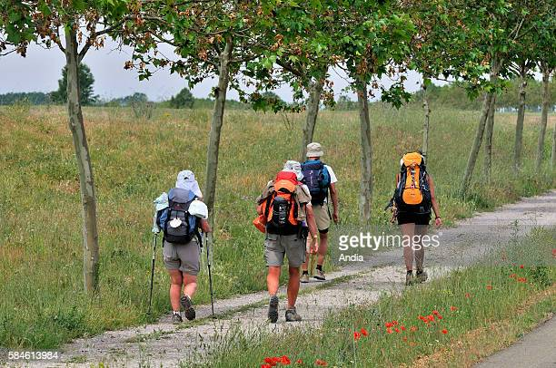 Pilgrims on the road to Mansillas de las Mulas in Castile it is a part of the famous Way of St James on 'Camino Frances'