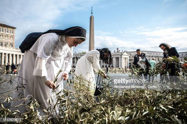 Pilgrims prepare for the Palm Sunday procession and Mass lead by Pope Francis in St Peter's Square on April 14 2019 in Vatican City Vatican...