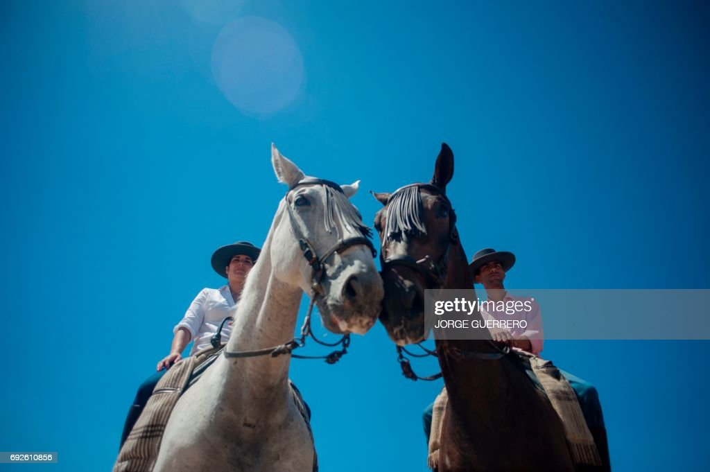 Pilgrims sit on horses during a pilgrimage in the village of El Rocio, southern Spain on June 5, 2017. El Rocio pilgrimage, the largest in Spain, gathers hundreds of thousands of devotees in traditional outfits converging in a burst of colour as they make their way on horseback and onboard decorated carriages across the Andalusian countryside. /