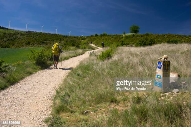 Pilgrims- The way of St. James- Navarre- Spain