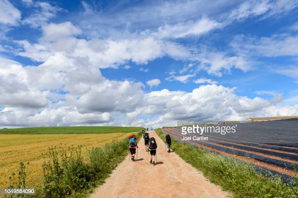 Pilgrims walking the Camino de Santiago in Spain's Navarre region
