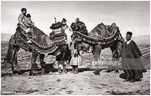 Pilgrims with their camels on their way to Karbala Iraq 1925 the site of the martyrdom in 680 of Abbas ibn Ali half brother of Husayn ibn Ali the...