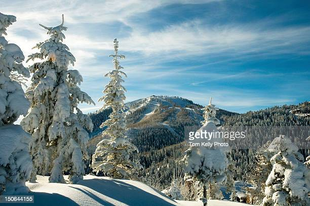 pillows of snow at deer valley resort - park city utah stock pictures, royalty-free photos & images