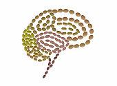 shape human brain created with pills