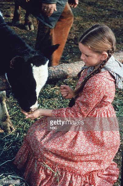 PRAIRIE 'Pilot' Aired Pictured Melissa Gilbert as Laura Elizabeth Ingalls Wilder Photo by NBCU Photo Bank