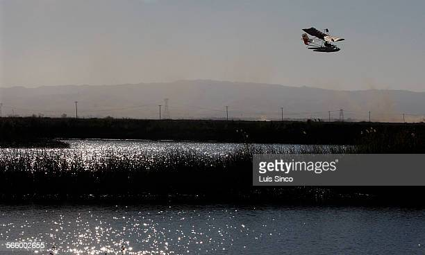 A pilot flies an ultralight aircraft over patches of reeds and tule near Bacon Island in the Sacramento–San Joaquin River Delta In April 2009 the...