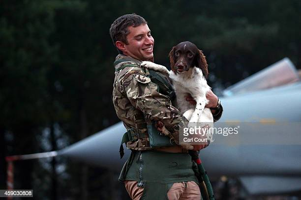 Pilot greets his springer spaniel upon arriving on a Royal Air Force Tornado GR4s at Royal Air Force Marham on November 15 2014 near the village of...