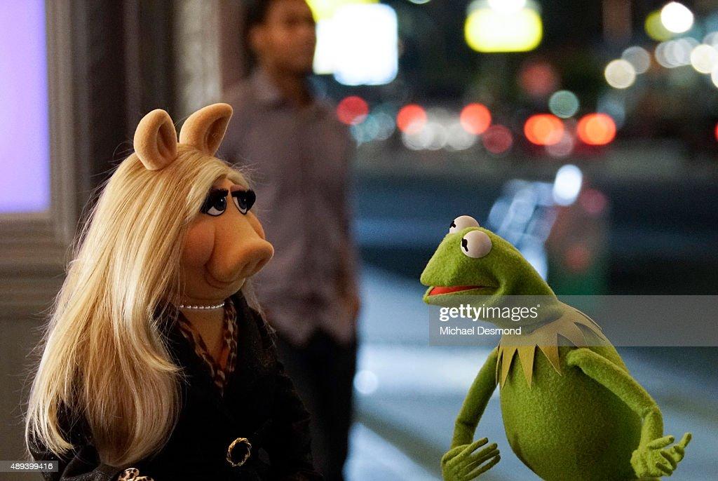 'The Muppets' - Season One : News Photo