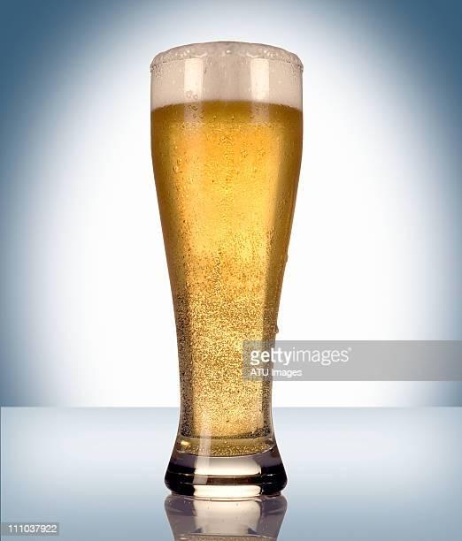 pilsner glass of beer - vaso de cerveza fotografías e imágenes de stock