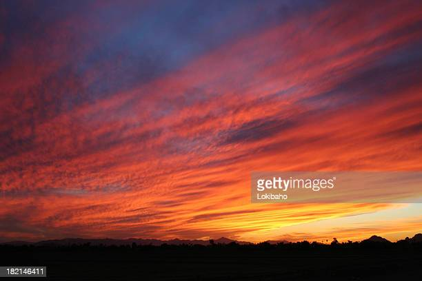 Pima Sunset