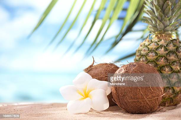 Pinapples and coconuts on the beach with copy space