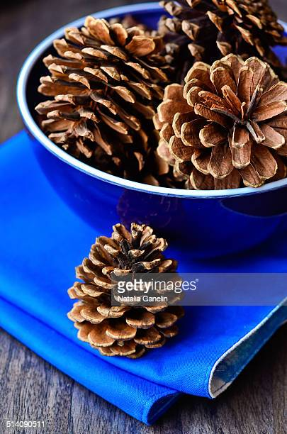 Pine cones in a blue bowl