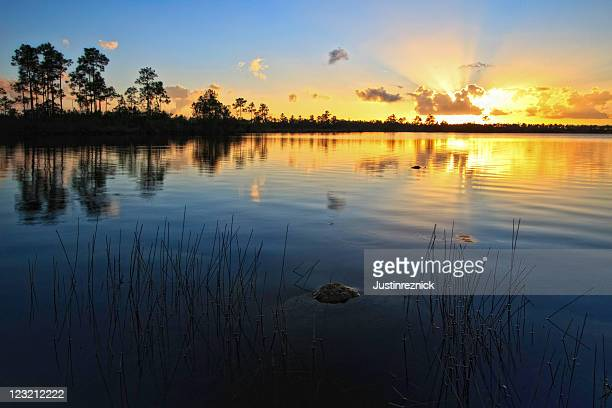 pine glades lake sunset - sunset lake stock photos and pictures