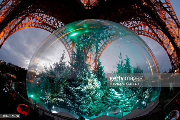 Pine trees are displayed in a giant snow globe under the Eiffel Tower in central Paris on December 20 2014 AFP PHOTO / FRANCOIS GUILLOT / AFP PHOTO /...