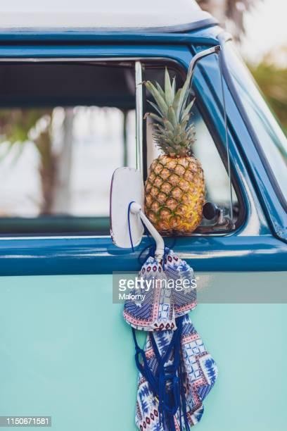 pineapple and bikini and side mirror of a camper van. - isla holbox fotografías e imágenes de stock