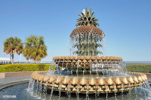 Pineapple Fountain, Charleston