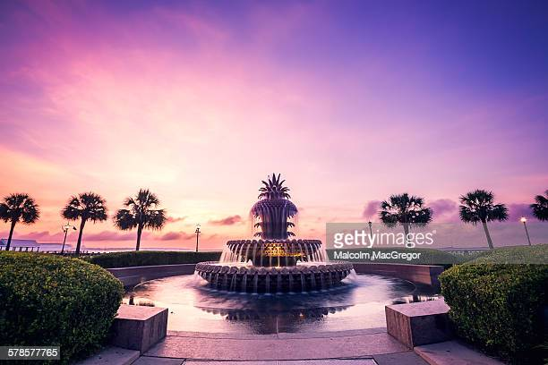 pineapple fountain in charleston - template_talk:south_carolina stock pictures, royalty-free photos & images