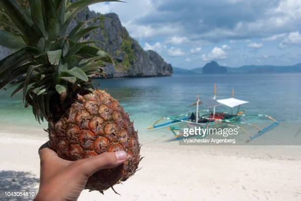 pineapple (ananas) fruit, tropical lagoon, philippines - argenberg stock pictures, royalty-free photos & images